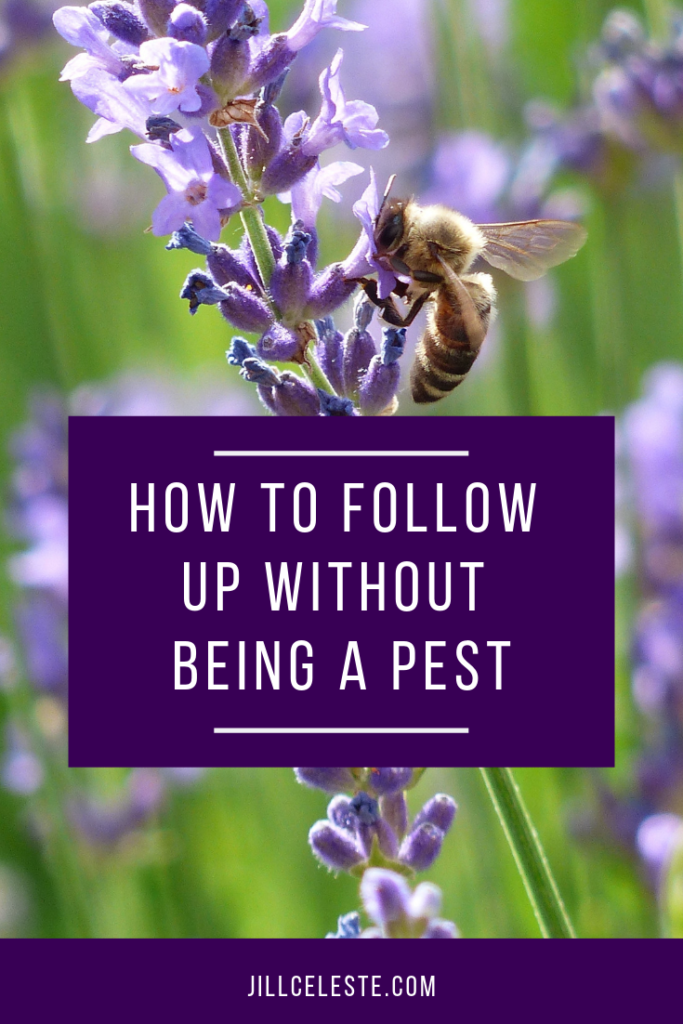 How To Follow Up Without Being A Pest by Jill Celeste