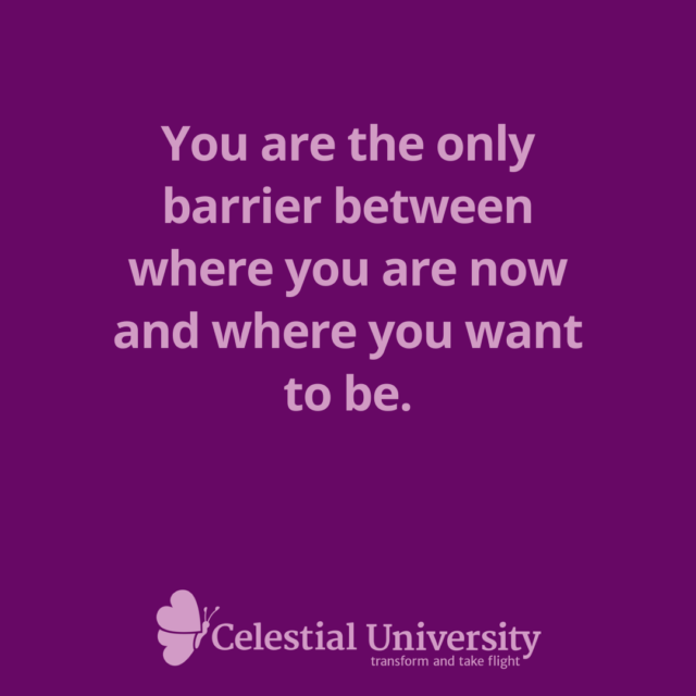 You are the only barrier between where you are now and where you want to be. - Jill Celeste