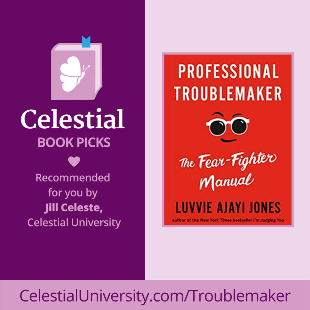 Book Review: Professional Troublemaker by Luvvie Ajayi Jones